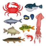 Seafood set with crab, fish, mussel and shrimp isolated on white background. Design for restaurant menu, market. Marine. Creatures in flat style - vector Stock Photography