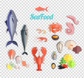 Seafood Set Design Flat Fish and Crab. Lobster and food oyster, fresh seafood, shrimp and menu octopus animal, shellfish lemon, fresh seafood vector Stock Image