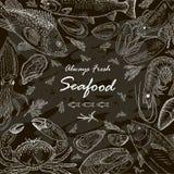 Seafood set fresh fish Royalty Free Stock Photos