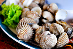 Seafood. Shell seafood dish on the table Stock Photo