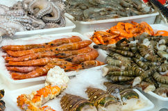 Seafood and shellfish at a market. Seafood and shellfish for sale at a market Stock Image