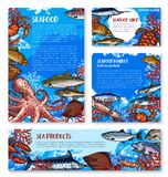 Seafood shop and fish market design templates. Seafood shop and fish market templates. Crab, lobster and salmon, shrimp, blue marlin and tuna, flounder, octopus Royalty Free Stock Image