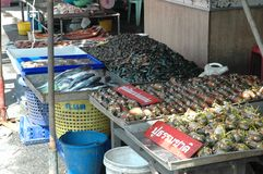 Seafood Shop at Fresh Market Royalty Free Stock Images