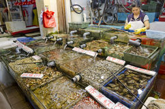 Seafood shop in Sai Kung,Hong Kong. A large variety of fish and seafood on display at a shop in Sai Kung, Hong Kong. The shop owner was processing some seafood royalty free stock image