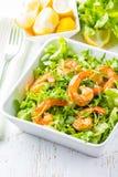 Seafood shrimp lettuce salad on white plate Stock Photos
