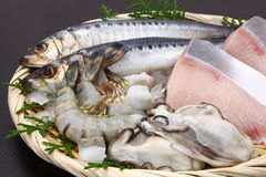Seafood. Shrimp,oyster,yellow tail fish and sardine Stock Images