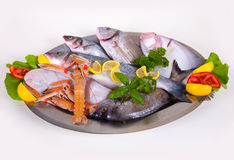 Seafood in Silver Restaurant Cloche Stock Images
