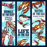 Seafood sketch banner of deep sea fish and animal. Seafood sketch banner set of deep sea fish and animal. Crab, lobster, shrimp or prawn, squid and fugu fish Stock Photo