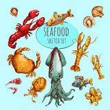 Seafood Sketch Colored Royalty Free Stock Images