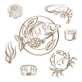 Seafood sketches with fish, sushi, crab and shrimp Stock Images