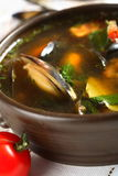 Seafood soup with parsley Royalty Free Stock Photo