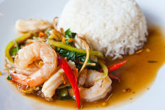 Seafood Spicy Stir-Fry with Rice Stock Image
