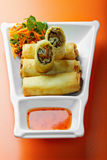 Seafood spring rolls in a plate Royalty Free Stock Images