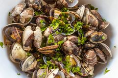 Seafood sprinkled with parsley Royalty Free Stock Photos