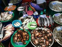 Seafood stall. At fresh market Stock Photography