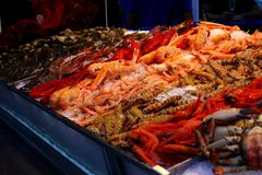 A Seafood Stall in the Market. An image of fresh seafood laid out on ice Royalty Free Stock Images