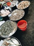 Seafood stall. At thai fresh market Royalty Free Stock Photo