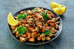 Seafood. Steamed Musseles appetizer with sprinkle of parsley and lemon juce served on black plate. Royalty Free Stock Images