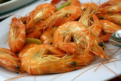 Seafood - Steamed Prawns. Freshly Steamed Prawns Ready to be Served Royalty Free Stock Photography