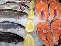 Seafood in the store. View at the rainbow trout and salmon stacks fish fillets in the store Stock Photos