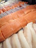 Seafood in the store. View at the tilapia, salmon, haddock and pickerel fish fillets in the store display case Stock Photography