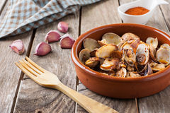 Seafood style clams Stock Photography