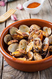 Seafood style clams Royalty Free Stock Photos