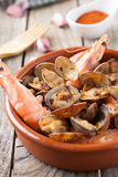 Seafood style clams Stock Image
