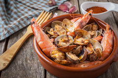 Seafood style clams Royalty Free Stock Images