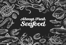 Seafood. template design menu restaurant, cafe. hand drawn food Royalty Free Stock Photos