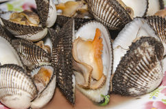 Seafood Thailand. Scallops poached in South Food Court Royalty Free Stock Photo