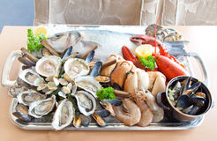 Seafood tray Stock Images