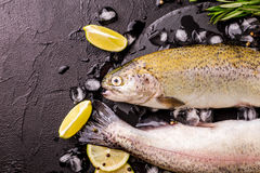 Seafood. Two raw rainbow trouts marinated with lime, rosemary. Seafood. Two raw rainbow trouts marinated with lime, peper, spices and rosemary on black stone stock image