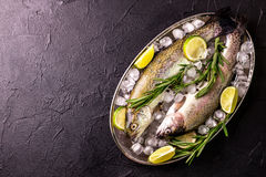 Seafood. Two raw rainbow trouts marinated with lime, rosemary. Seafood. Two raw rainbow trouts marinated with lime, peper, spices and rosemary on metal tray and stock image
