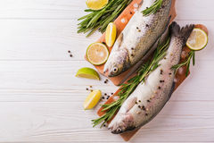 Seafood. Two raw rainbow trouts marinated with lime, rosemary Royalty Free Stock Photo