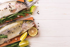 Seafood. Two raw rainbow trouts marinated with lime, rosemary Stock Photography