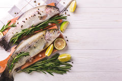 Seafood. Two raw rainbow trouts marinated with lime, rosemary Stock Images