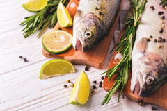 Seafood. Two raw rainbow trouts marinated with lime, rosemary. Seafood. Two raw rainbow trouts marinated with lime, peper, spices and rosemary on wooden board stock photography