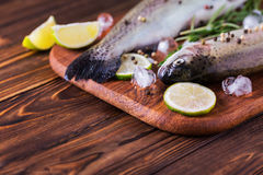 Seafood. Two raw rainbow trouts marinated with lime, rosemary. Seafood. Two raw rainbow trouts marinated with lime, peper, spices and rosemary on wooden board royalty free stock photography