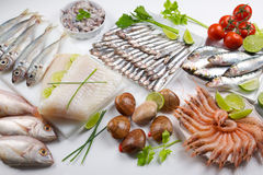 Seafood variety Royalty Free Stock Photography