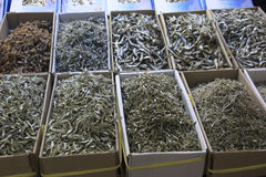 Seafood variety in fish market, Busan, S. Korea. Various types of dried seafood in boxes for sale at the fish market in Busan, S. Korea Stock Photos