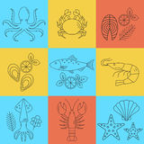 Seafood vector flat line icons set. Vector illustrations of lobster, crab, salmon, fish, squid, oyster, shrimp, octopus eel Stock Photography