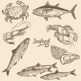 Seafood vector illustration 1 stock illustration