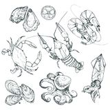 Seafood vector illustration Stock Photos