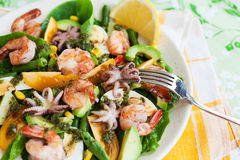 Seafood and vegetables salad Stock Photos