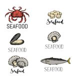 Seafood vintage hand drawn icon set. Oyster, crab, scallop and fish sketches for restaurant menu. Natural healthy food lettering design elements vector Royalty Free Stock Photos