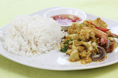 Seafood yellow curry powder stir Fried with steam rice Stock Photos