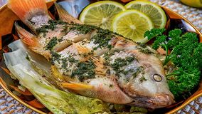 Seafood for you! Bon Appetit! Stock Images