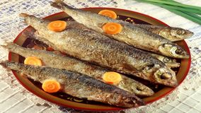 Seafood for you! Bon Appetit! Stock Photos