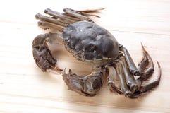 Seafood5 Royalty Free Stock Image